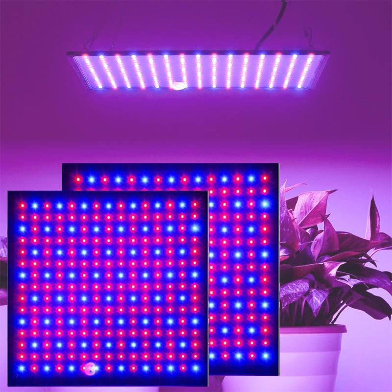 1000w growth lamp for plants font b